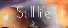 Still Life Gallery